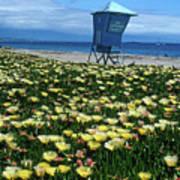 Spring Break Santa Barbara Poster by Kathy Yates