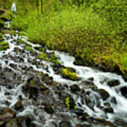 Spring Cascades Poster