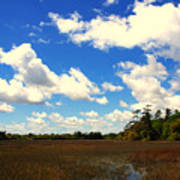 Spring Clouds Over The Marsh Poster