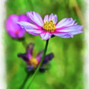 Spring Desires 2 Poster