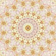 Spring Fantasy Floral Mandala Poster