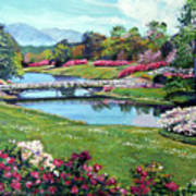 Spring Flower Park Poster