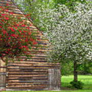 Spring Flowers And The Barn Poster