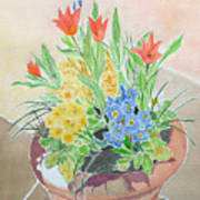 Spring Flowers In Pot Poster