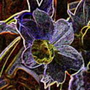 Spring Garden Art Poster