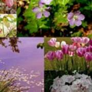 Spring Has Sprung... Poster