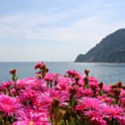 Spring In Cinque Terre Poster