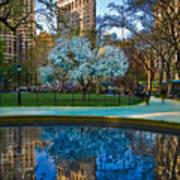 Spring In Madison Square Park Poster