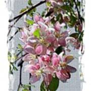 Spring Is Melting Away Poster