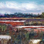 Spring Marsh Poster