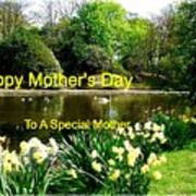 Spring Mother's Day Greeting Poster