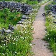 Spring Path/loving Poster