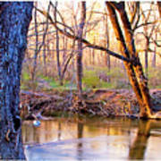 Spring, Pennypack Creek, Pennsylvania Poster