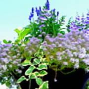 Spring Planter Poster