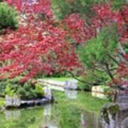 Spring Pond Reflection Poster