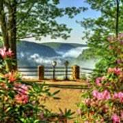 Spring Time At Colton Point State Park Poster