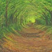 Spring Tree Tunnel Poster