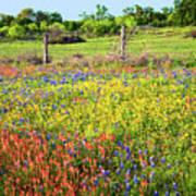Spring's Floral Quilt Poster