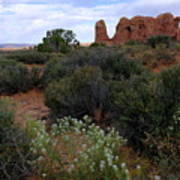 Springtime At Arches Poster