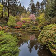 Springtime At Portland Japanese Garden Poster