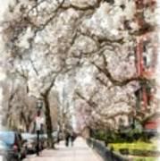 Springtime Boston Back Bay Poster