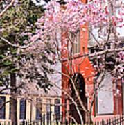 Springtime In Lincoln Park Poster