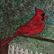 Springtime Red Cardinal Poster