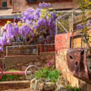 Springtime Wisteria In Old Bisbee Poster