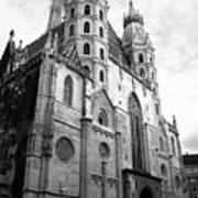 St Stephens Cathedral Vienna In Black And White Poster