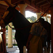Stable Groom - 2 Poster