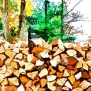 Stacked Fire Wood In Preparation For Winter 1 Poster