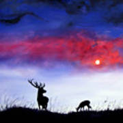 Stag And Deer In Moonlight Poster
