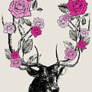 Stag And Roses Poster