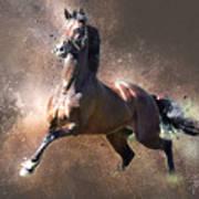 Stallion Poster