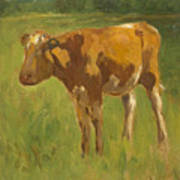 Standing Calf Poster
