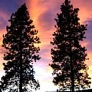 Standing Tall At Sundown Poster