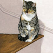Stanzie Cat Poster