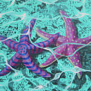 Starfish In Love Poster