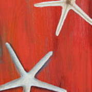 Starfish On Red Poster
