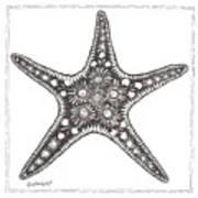 Starfish Poster by Stephanie Troxell