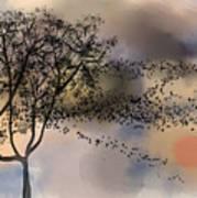 Starlings At Dusk Poster
