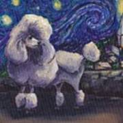 Starry Night Poodle Poster