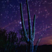 Starry Starry Sonoran Skies  Poster