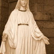 Statue Of Mary At Sacred Heart In Tampa Poster