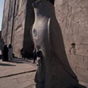 Statue Of The Bird God, Horus Poster by Richard Nowitz