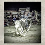 Steer Buck Out _c Poster