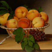 Still Life - Basket Of Peaches Poster