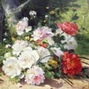 Still Life Of Flowers Poster