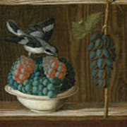 Still Life Of Grapes With A Gray Shrike Poster