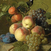 Still Life Of Peaches  Grapes And Plums On A Stone Ledge With A Bird And Butterfly Poster